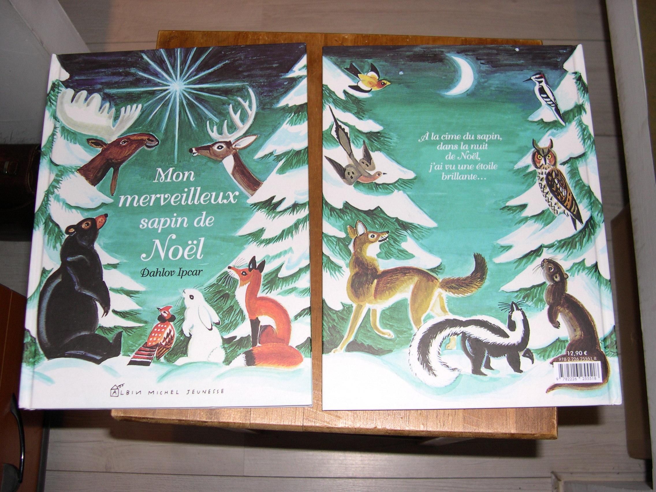 livres pour enfants plus grands mon merveilleux sapin de no l. Black Bedroom Furniture Sets. Home Design Ideas